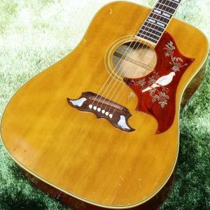 (中古)Gibson / Dove NT 1969年製 ギブソン(S/N 543923)(保証2年)...