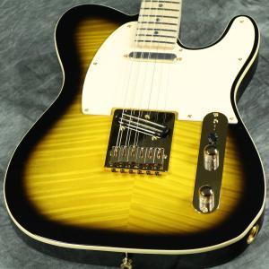 Fender / Japan Exclusive Ritchie Kotzen Telecaster Brown Sunburst《ピックケースプレゼント! / +811177400》【S/N JD19000863】