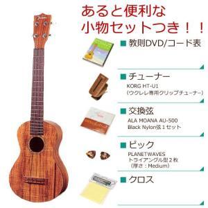 Famous フェイマス / FC-2 (あると便利な小物セットつき ) コンサート ウクレレ FC2(お取り寄せ商品)(送料無料)|ishibashi