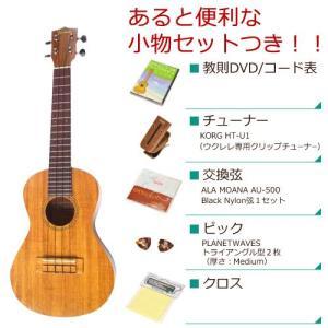 FAMOUS フェイマス / FC-4 コンサート (あると便利な小物セットつき ) ウクレレ FC4(お取り寄せ商品)(送料無料)|ishibashi