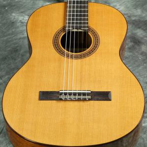 Cordoba / C5 《特典つき!/+80-setcordoba20》【Iberia Series】 コルドバ クラシックギター ガットギター 入門 初心者 C-5 ナイロンストリングス