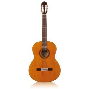 Cordoba / C7 (Iberia Series) コルドバ クラシックギター ガットギター 入門 初心者 C-7 (正規輸入品/お取り寄せ商品)|ishibashi