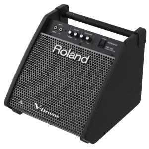 Roland 電子ドラム用モニタースピーカー PM-100 (予約注文/1月20日発売)(WEBSHOP)|ishibashi