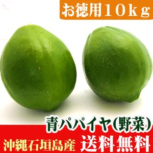 お徳用 青パパイヤ10kg(10〜30個)送料無料※ポーク缶オマケ付き|ishigakijimanoukatai