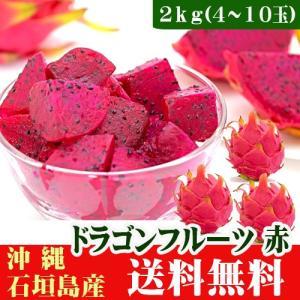 ドラゴンフルーツ 赤2kg(4〜10玉) 沖縄石垣島産|ishigakijimanoukatai