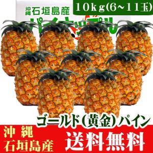 石垣島ゴールドパイン10kg(6〜11玉) 送料無料|ishigakijimanoukatai