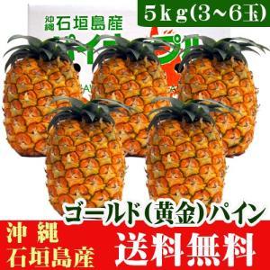 ゴールドパイン5kg(3〜6玉)沖縄石垣島産 送料無料|ishigakijimanoukatai