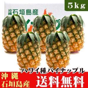 パイナップル(ハワイ種)5kg(4〜6玉)沖縄石垣島産|ishigakijimanoukatai