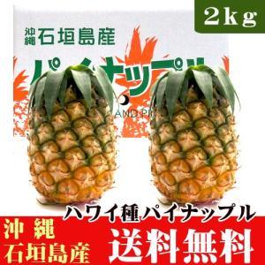 石垣島産パイナップル(ハワイ種) お試し2kg(2〜3玉) 送料無料|ishigakijimanoukatai