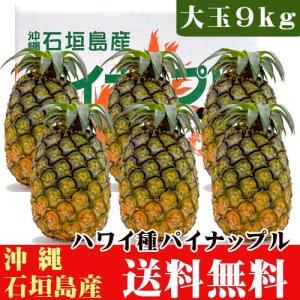 石垣島産パイナップル(ハワイ種) 大玉9kg(5〜7玉) 送料無料|ishigakijimanoukatai