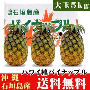 石垣島パイナップル(ハワイ種)大玉5kg(3〜4玉) 送料無料|ishigakijimanoukatai