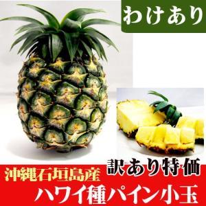 訳ありハワイ種パイン小玉(約600〜800g) 特価|ishigakijimanoukatai