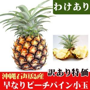 訳あり 早なりピーチパイン(約400〜500g)期間限定特価|ishigakijimanoukatai