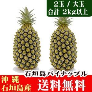 石垣島パイン「ハニーブライト 大玉2玉(約2kg)」 送料無料|ishigakijimanoukatai