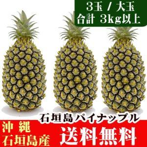 石垣島パイン「ハニーブライト 大玉3玉(約3kg)」 送料無料|ishigakijimanoukatai