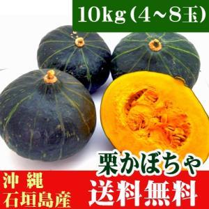 ティーダの栗かぼちゃ 10kg(4〜8玉)石垣島産|ishigakijimanoukatai