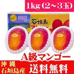 石垣島産完熟アップルマンゴー1kg 2〜3玉 当店最高品質A ishigakijimanoukatai