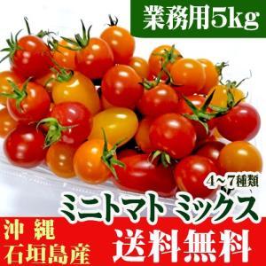 お徳用 ミニトマト ミックス 4〜7種類 業務用5kg 石垣島産 送料無料