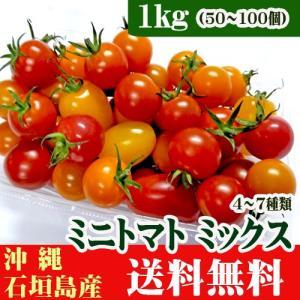ミニトマトミックス 4〜7種類 1kg(50〜100個) 石垣島産 送料無料