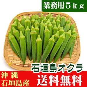 石垣島オクラ 生 業務用 5kg|ishigakijimanoukatai