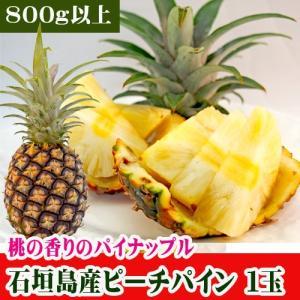 石垣島産パイン「大玉 ピーチパイン」 800g〜1200g|ishigakijimanoukatai