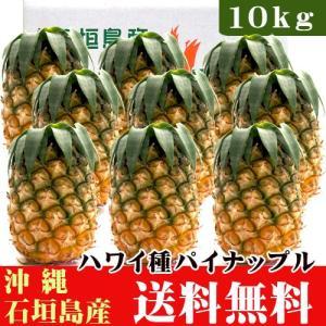 石垣島産パイナップル(ハワイ種)10kg(7〜13玉) まとめ買い 送料無料|ishigakijimanoukatai