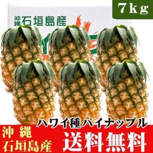 石垣島パイナップル(ハワイ種)7kg(5〜9玉) 送料無料|ishigakijimanoukatai