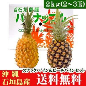 石垣島パイナップルセット スナックパイン・ピーチパイン 2kg 2〜3玉|ishigakijimanoukatai