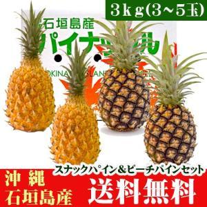 石垣島パインセット スナックパイン・ピーチパイン 3kg 3〜5玉 沖縄|ishigakijimanoukatai