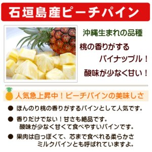 石垣島パインセット スナックパイン・ピーチパイン 3kg 3〜5玉 沖縄 ishigakijimanoukatai 03