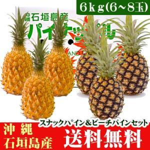 石垣島産パインセット スナックパイン・ピーチパイン 6kg(6〜8玉)|ishigakijimanoukatai