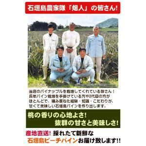 ピーチパイン 2kg 2〜3玉  石垣島産 沖縄 送料無料|ishigakijimanoukatai|04