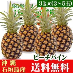 石垣島ピーチパイン 3kg 3〜5玉 送料無料|ishigakijimanoukatai