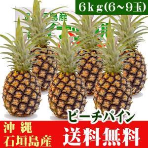 沖縄ピーチパイン 6kg 6〜9玉 石垣島産|ishigakijimanoukatai