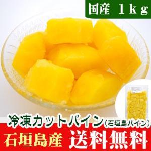 石垣島産 冷凍パイン(ティーダパイン)1kg 送料無料|ishigakijimanoukatai