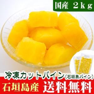 冷凍パイン(ティーダパイン)2kg 沖縄石垣島産 送料無料|ishigakijimanoukatai