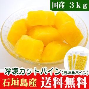 石垣島産 冷凍カットパイン3kg 送料無料|ishigakijimanoukatai