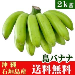 島バナナ2kg(14〜35本)沖縄石垣島産 送料無料