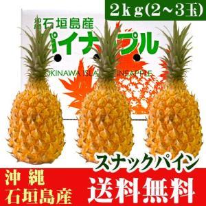 スナックパイン2kg(2〜3玉) 沖縄県石垣島産 送料無料|ishigakijimanoukatai
