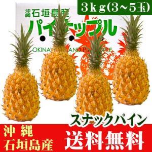 石垣島スナックパイン 3kg 3〜5玉 沖縄|ishigakijimanoukatai