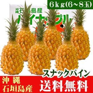 スナックパイン 6kg 6〜8玉 沖縄 石垣島産|ishigakijimanoukatai