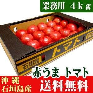 赤うまトマト A級品4kg(産地直送野菜) 送料無料