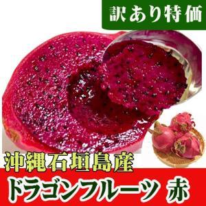 石垣島産 訳ありドラゴンフルーツ 赤 500g(2〜4玉)特価|ishigakijimanoukatai