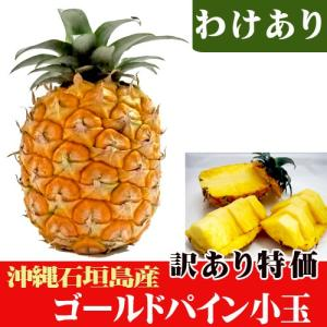 訳ありゴールドパイン小玉(約0.5〜0.8kg)石垣島産 特価|ishigakijimanoukatai