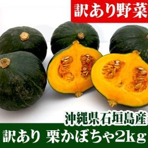 訳あり 栗かぼちゃ小玉 2kg(2〜6玉)石垣島産|ishigakijimanoukatai