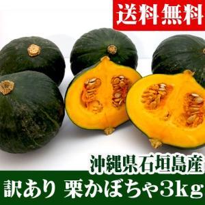訳あり 栗かぼちゃ小玉 3kg(3〜9玉)石垣島産 送料無料|ishigakijimanoukatai