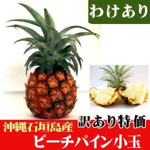 訳ありピーチパイン小玉(約400〜500g) 特価|ishigakijimanoukatai