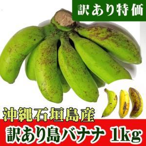 訳あり特価 島バナナ1Kg(6〜22本)沖縄石垣島産