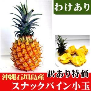 訳ありスナックパイン小玉 (約400〜500g) 特価|ishigakijimanoukatai