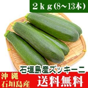ズッキーニ2kg 8〜13本入 石垣島産|ishigakijimanoukatai